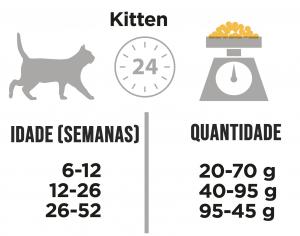 DDR_Pro Plan Original Kitten